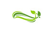 Fresh Leaf Ornament, Nature Leaf logo template vector