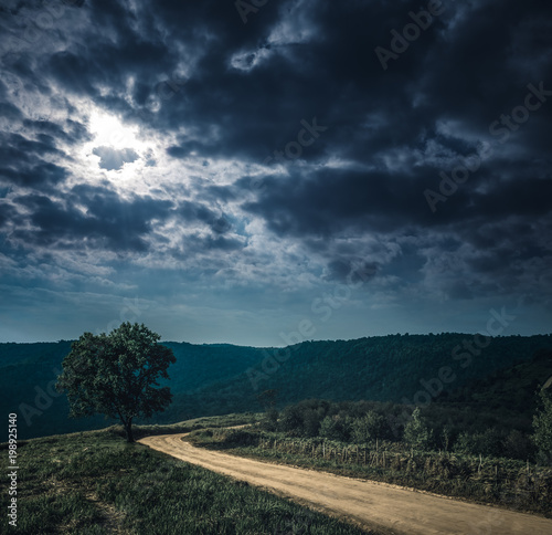 Keuken foto achterwand Zwart Landscape in nature of sky with cloudy and roadway through forest.