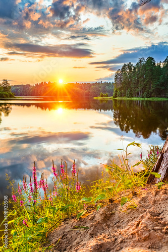 Tuinposter Diepbruine Beautiful sunset over lake in a forest
