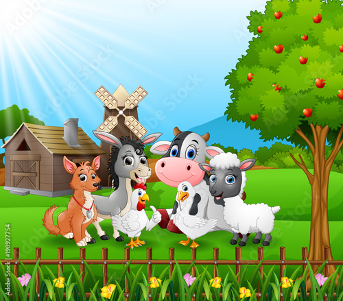 Wall Murals Ranch Farm background with happy animals