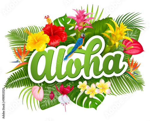 Aloha Hawaii lettering and tropical plants Canvas Print