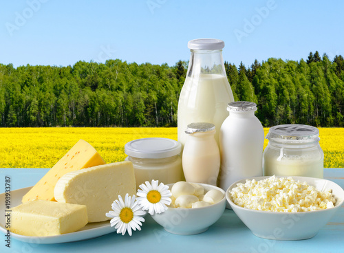 Staande foto Zuivelproducten Dairy products on the field and sky background.