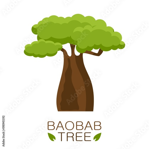 Carta da parati African Baobab tree icon with text isolated on white background