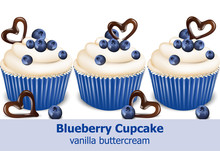 Blueberry Cupcakes Vector Real...