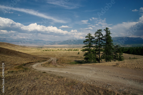 Fotografia Road through a dry desert steppe on a highland mountain plateau with yellow gras