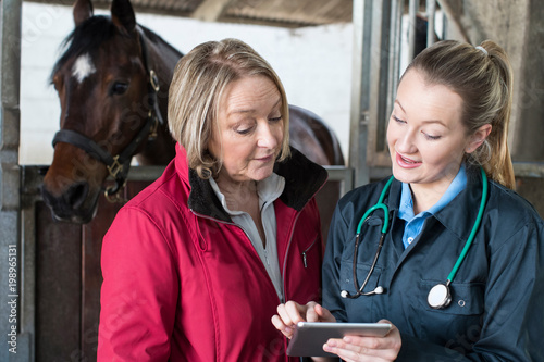 obraz lub plakat Female Vet Examining Horse In Stables Showing Owner Digital Tablet