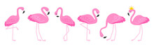 Flamingo Or Tropical Birds Illustration For Party Card. Summer Exotic Background. Vintage Cute Holiday Set.