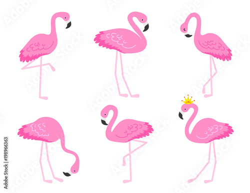 Canvas Prints Flamingo Bird Flamingo or tropical birds illustration for party card. Summer exotic background. Vintage cute holiday set.