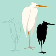 Heron Bird Vector Illustration Front View Flat Style Silhouette