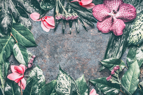 Tropical leaves and pink exotic flowers background top view frame tropical leaves and pink exotic flowers background top view frame mightylinksfo