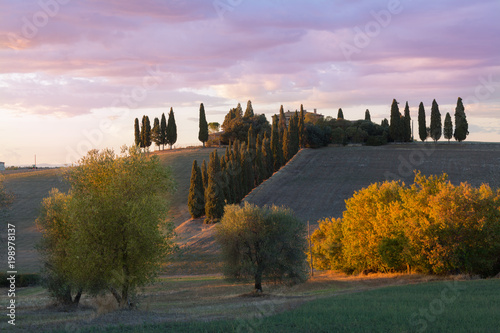 Fotobehang Purper Wavy hills, sunset in Tuscany, Italy