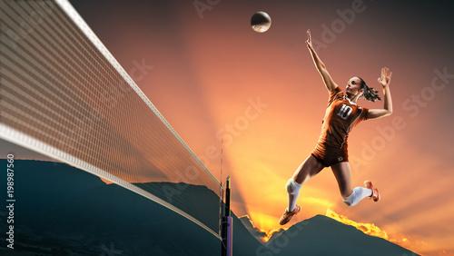 Professional female volleyb...