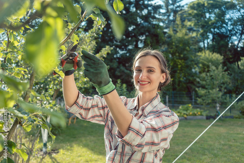 Photo Woman in garden outdoors checking fruit tree