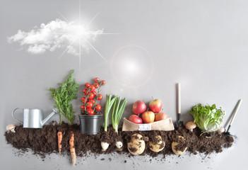 Kitchen garden concept