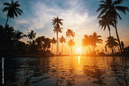 Beautiful tropical beach with palm trees silhouettes at dusk. Canvas Print