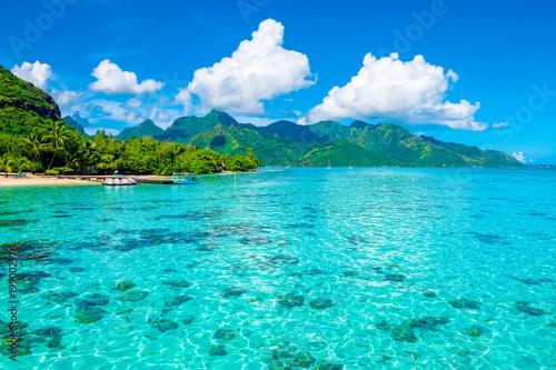 Lagoon landscape, Moorea Tableau sur Toile