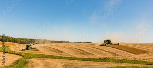 Fotografía Fall Harvest