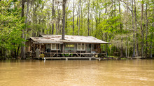 A Cajun Fish Camp In The Swamp...