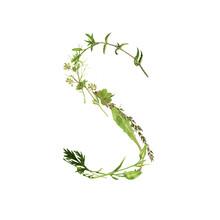 Floral Watercolor Letter S