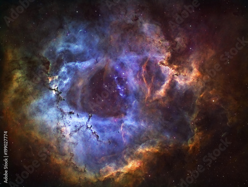 The Rosette Nebula Canvas-taulu