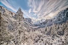Winter Wonderland In Yosemite