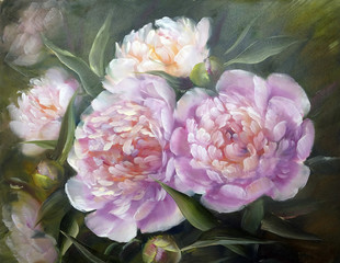 Fototapeta Do salonu Romantic Pink Peonies, oil painting on canvas