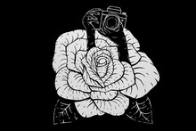 BLACK ROSE WITH PHOTOGRAPHER