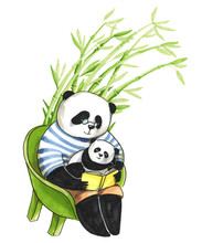 Father Panda In T-short Sitting On Chair And Reading A Book To His Little Son Panda, Who Is Just Sleeping