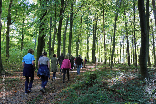 Fototapeta Wanderung im Wald obraz