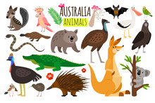 Australian Animals. Vector Ani...