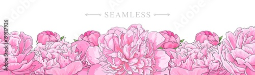 Elegant pink peonies border seamless pattern isolated on white background Wallpaper Mural