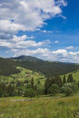 Fototapeta na wymiar Amazing view of beautiful cloudy summer landscape and village in distance. Tops of mountains and old thick wood growing on hills. Vertical color image.