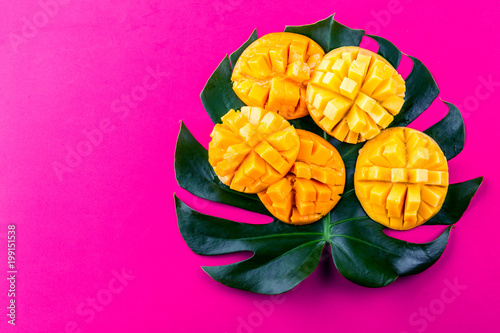 Aluminium Prints Pink Creative layout made of summer tropical fruits mango and tropical leaves on pink background. Flat lay. Tropical food concept.