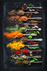 Fototapeta Przyprawy Herbs and spices for cooking on dark background