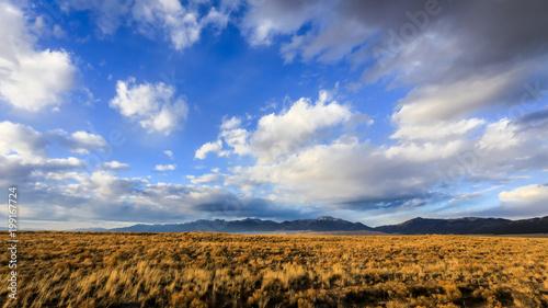 Foto op Aluminium Nachtblauw Landscape