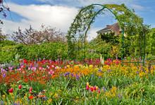 Monet`s Garden At Spring, Give...