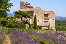 Beatiful House Is Situated Near Blooming Lavender, Provence, France.