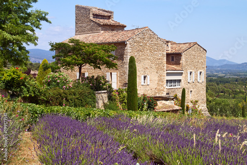 Naklejka premium Piękny dom położony jest w pobliżu kwitnącej lawendy w Prowansji, we Francji.