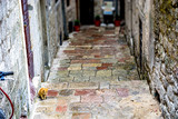 Fototapeta Uliczki - Stone steps between narrow streets of houses in Kotor. A red cat is sitting on the steps.