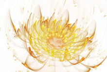 Abstract Exotic Flower With Sp...