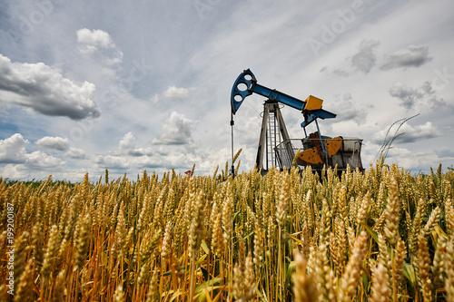 Fototapeta Oil pump obraz