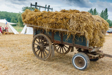 Cart Full Of Hay