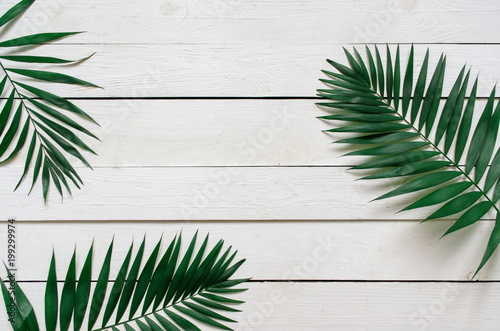 Recess Fitting Palm tree Green flat lay tropical palm leaf branches on white wooden planks background. Room for text, copy, lettering.
