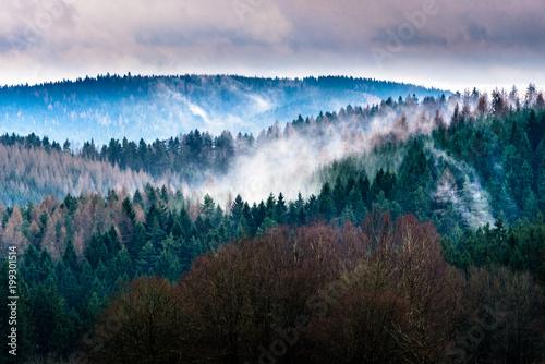 mgly-nad-lasem-turynskim-wlochy