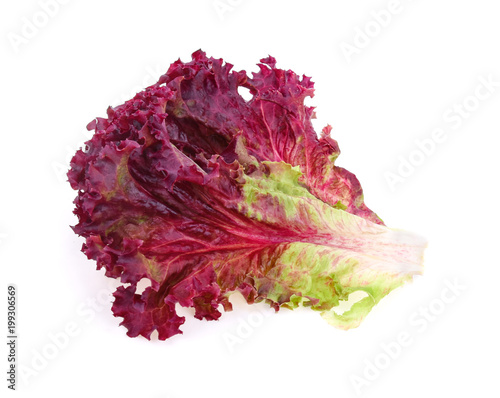 red coral salad isolated on white background