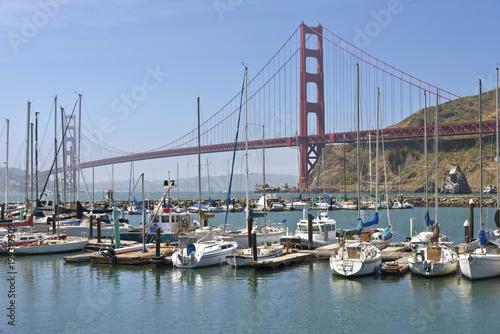 Garden Poster Roe Golden Gate bridge and marina California.