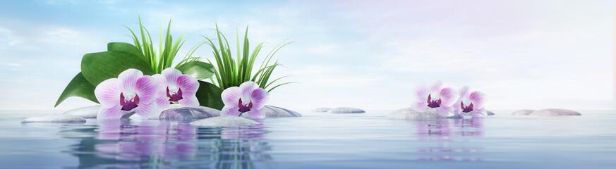 Panel Szklany Orchideen mit Steinen im See - sonnige Stimmung