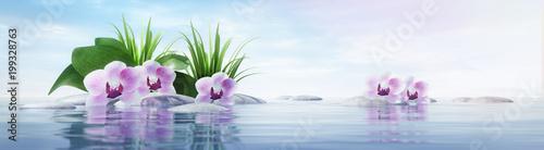 Orchideen mit Steinen im See - sonnige Stimmung