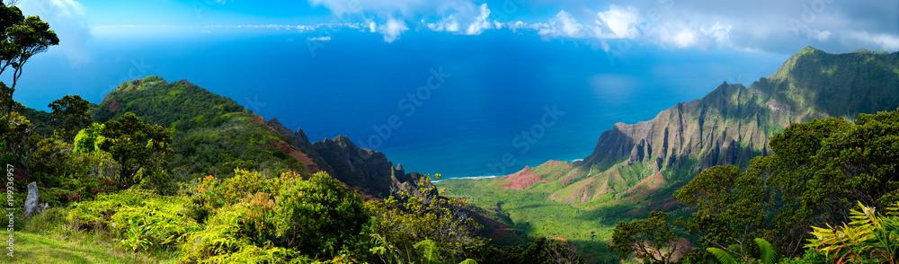 Fototapeta Hawaii Panorama of the Ocean in Kauai