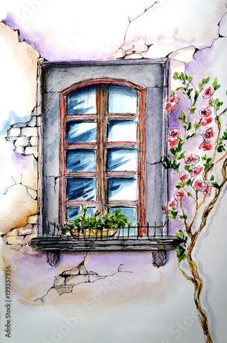 okno-z-krzewem-rozanym